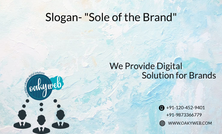 Oakyweb- Digital Solution in Delhi